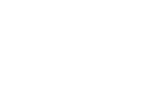 Fetching Dogs